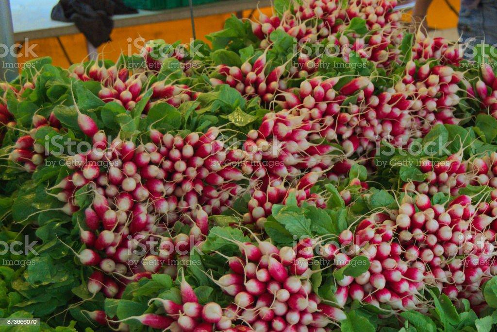 Fresh Radishes at Market stock photo