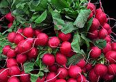 Fresh radishes in market of  Birmingham