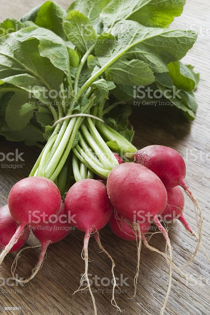 Fresh radishes with green stems stock photo