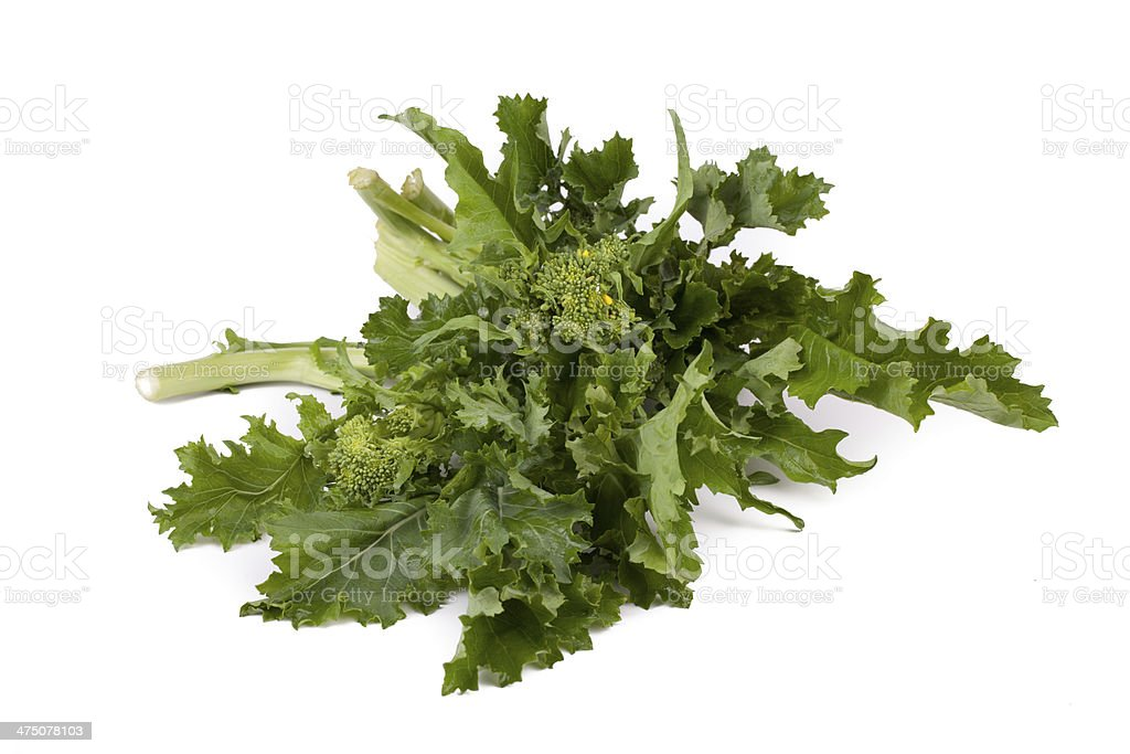 Fresh Rapini stock photo