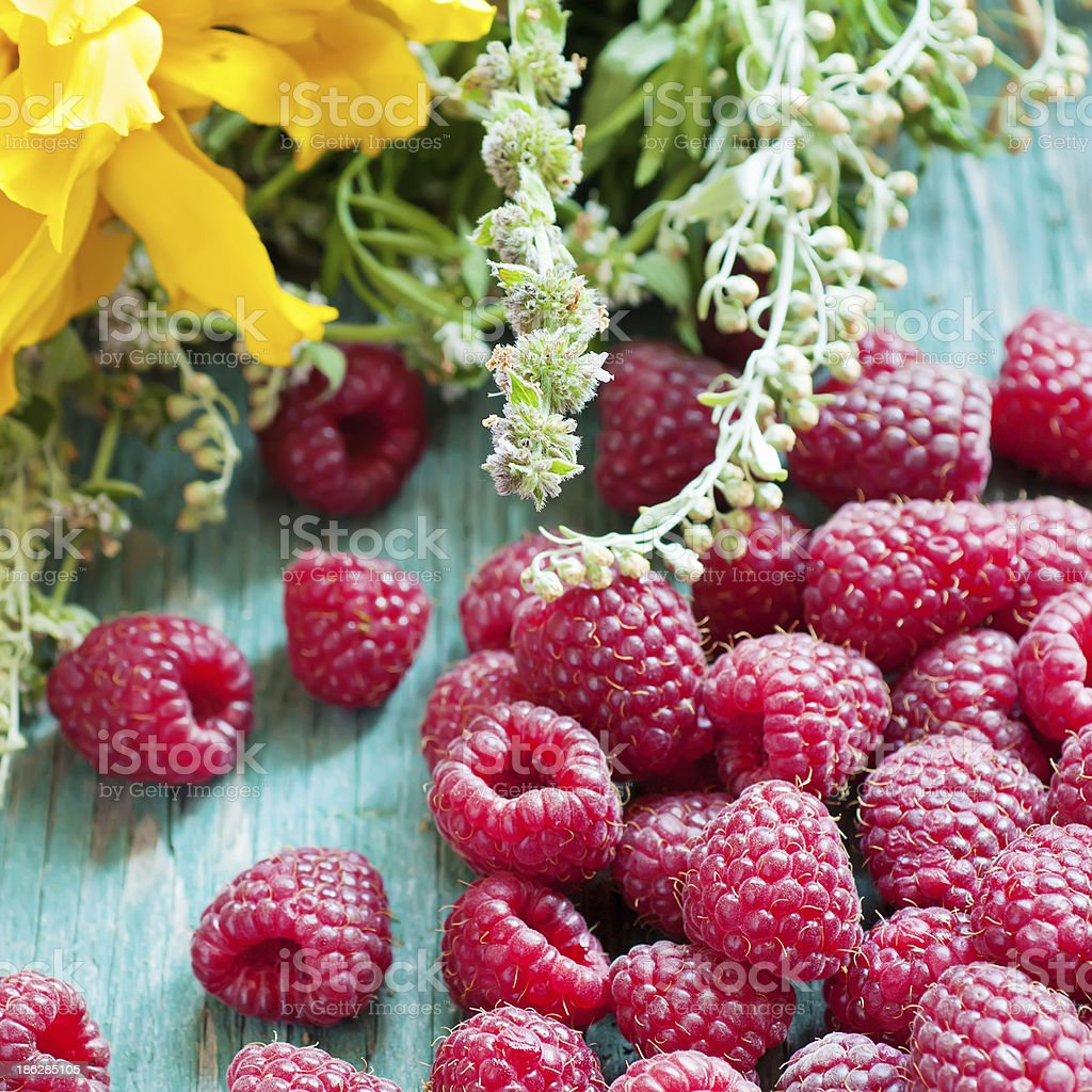 Fresh raspberry royalty-free stock photo