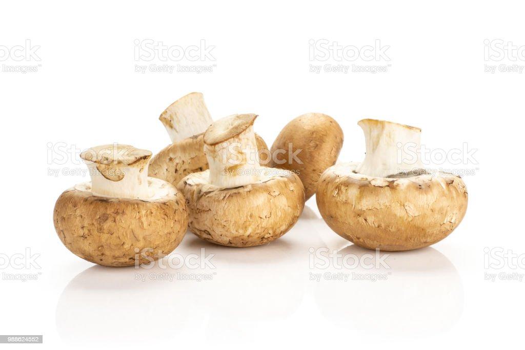 Fresh raw brown champignons isolated on white stock photo