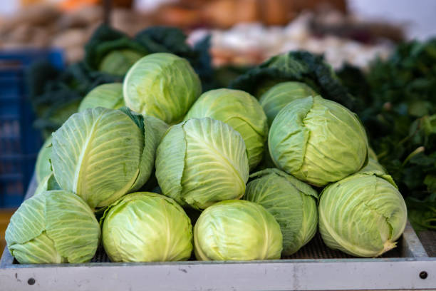 Fresh raw cabbage Green cabbage for sale at a farmer's market stall cabbage stock pictures, royalty-free photos & images