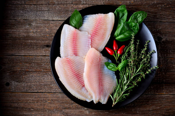 Fresh raw fillet of tilapia fish stock photo
