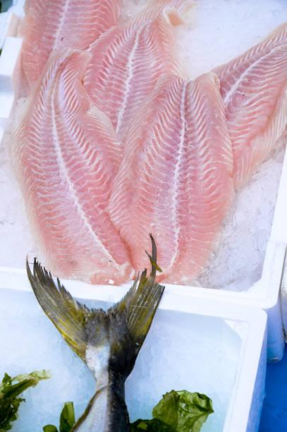 Fresh raw fish exposed stock photo