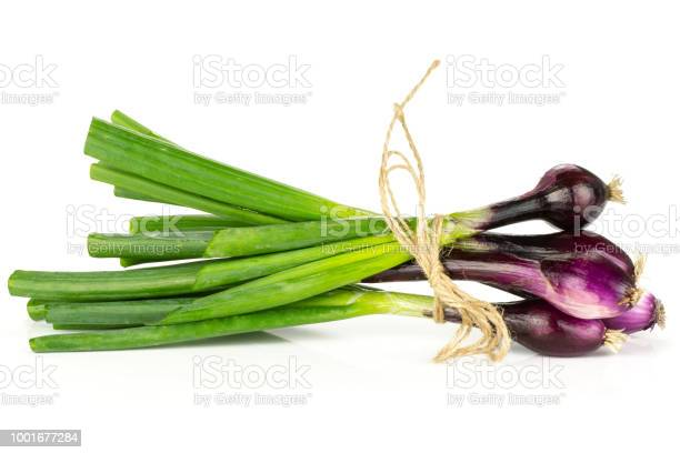 Photo of Fresh Raw green spring onion isolated on white