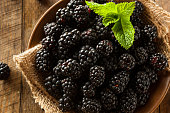 Fresh Raw Organic Blackberries in a Bowl
