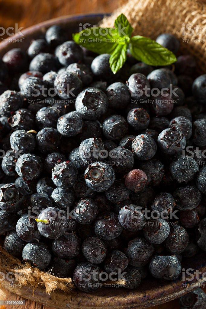 Fresh Raw Organic Blueberries stock photo
