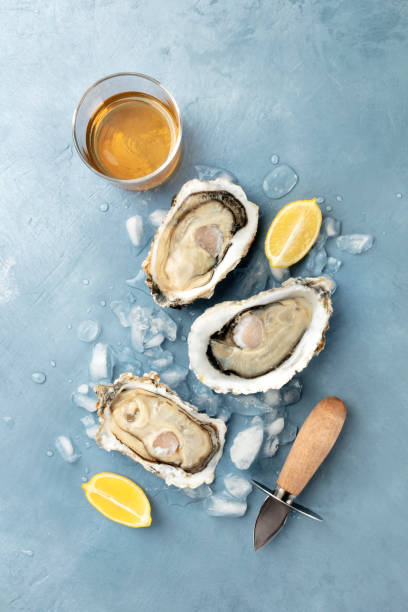 Fresh raw oysters, shot from the top on ice with a glass of white wine and lemon slices stock photo