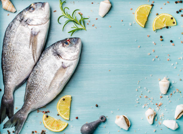 Fresh raw sea bream fish decorated with lemon slices, herbs and  shells on blue wooden background, copy spac stock photo