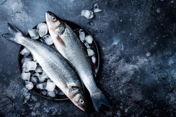 Frischer roher Seevöcher auf schwarzem Steingrund mit Eis. Kulinarische Meeresfrüchte Hintergrund. Topansicht, Kopierplatz – Foto