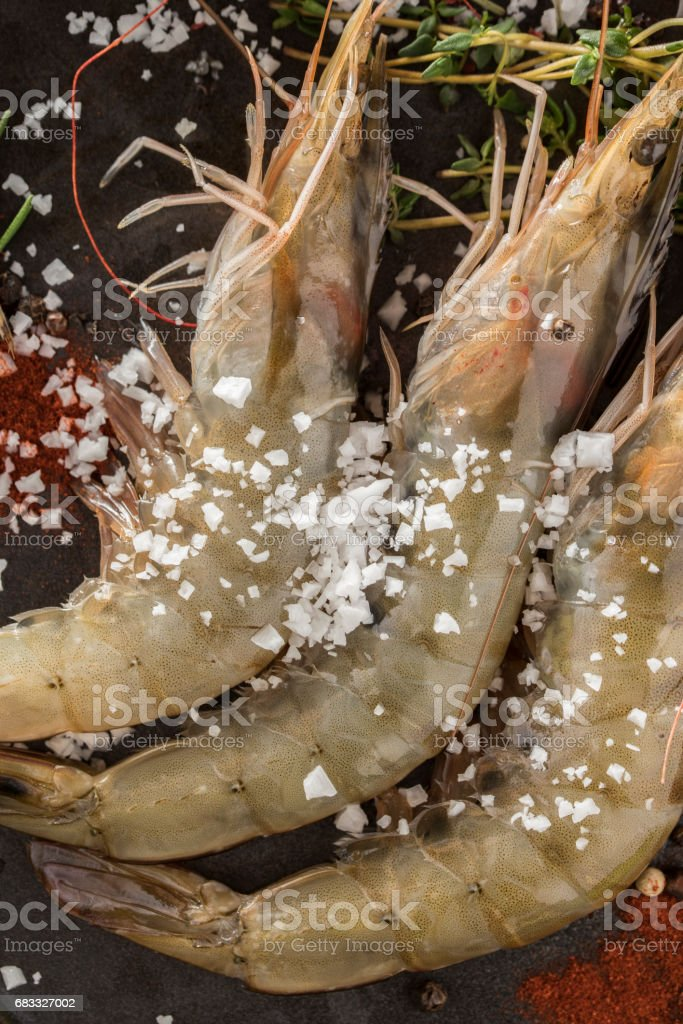 Fresh Raw Shrimp with spices royalty-free stock photo