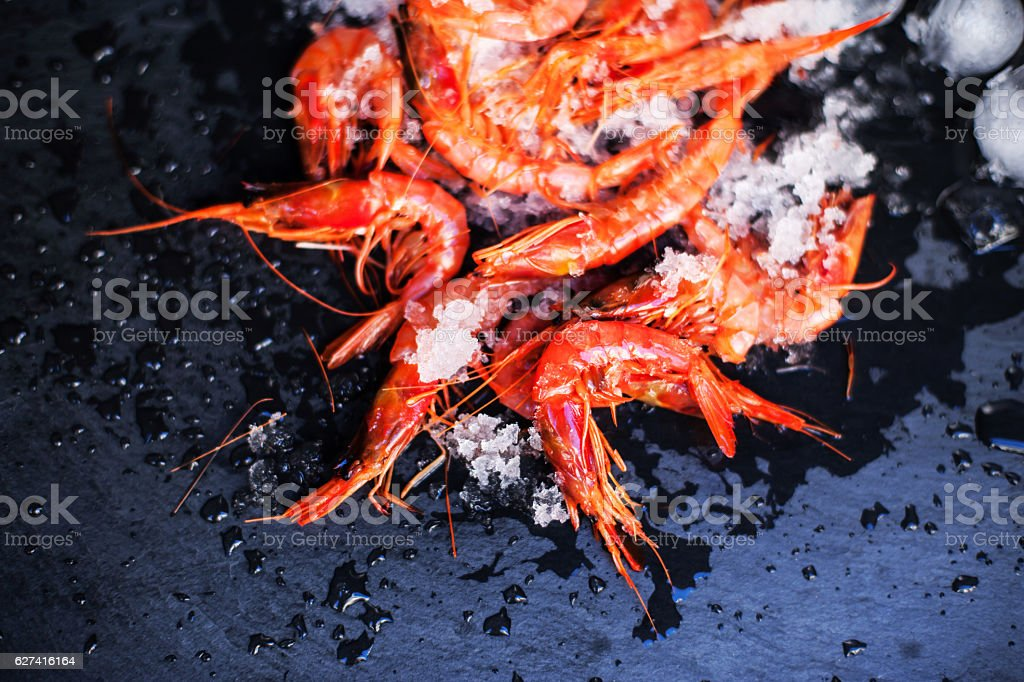Fresh raw shrimps on black board with ice. Food background stock photo
