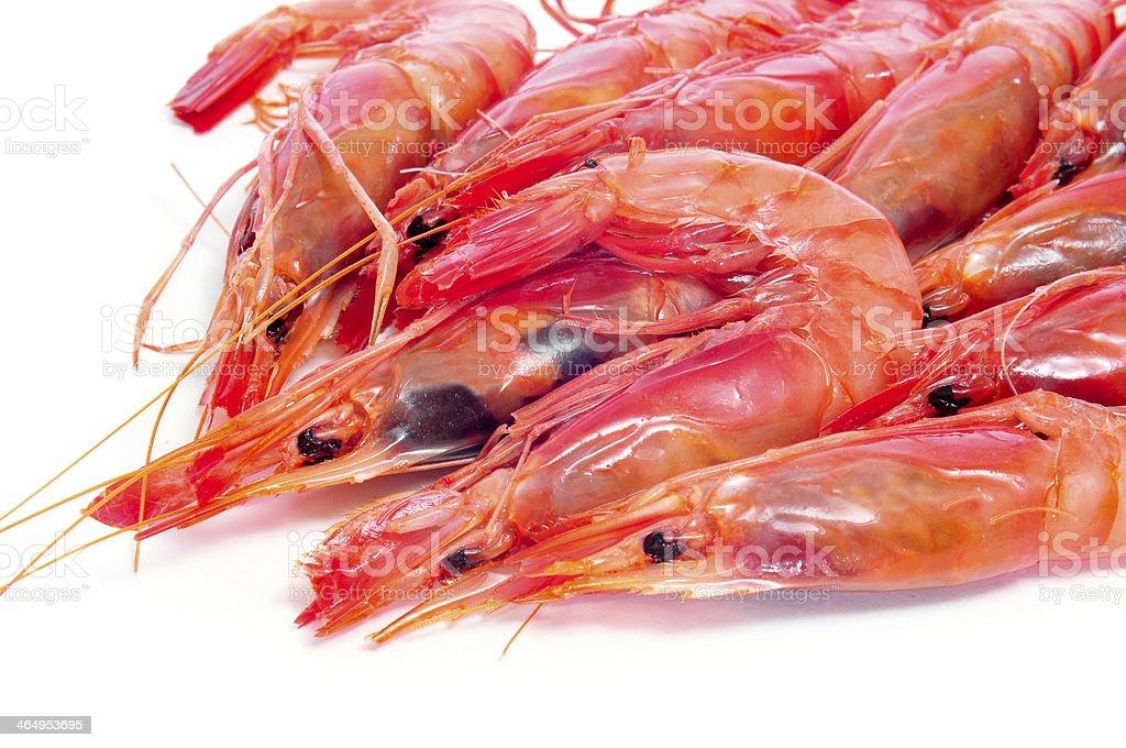 fresh raw shrimps stock photo