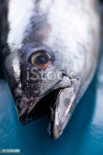635931692 istock photo Fresh raw tuna fish close up in market 512335486