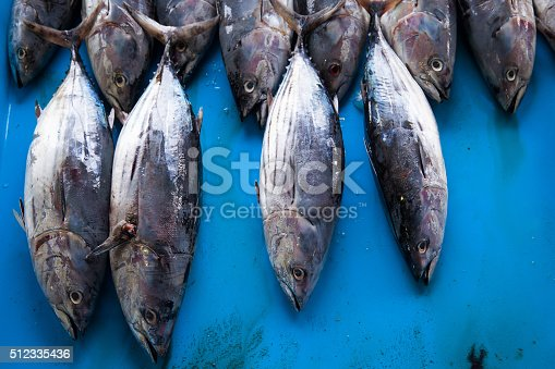 635931692 istock photo Fresh raw tuna fish in market 512335436