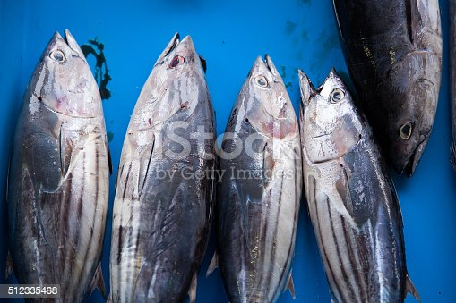 635931692 istock photo Fresh raw tuna fish in market 512335468