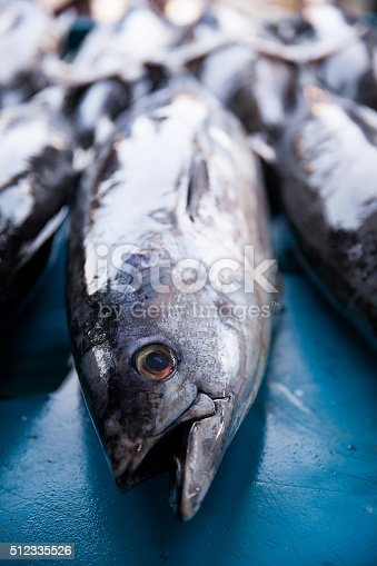 635931692 istock photo Fresh raw tuna fish in market 512335526