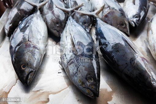 635931692 istock photo Fresh raw tuna fish in market 512336536