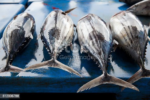 635931692 istock photo Fresh raw tuna fish in market 512336788