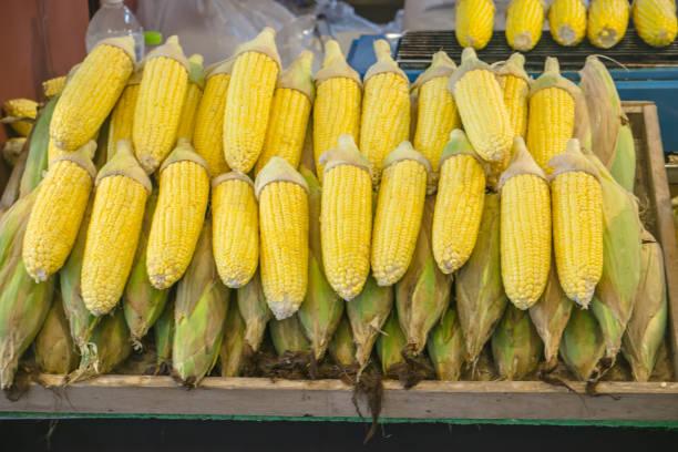 Fresh Raw Yellow Corn arranged display in wooden box on shelf in Market Fresh Food Concept stock photo