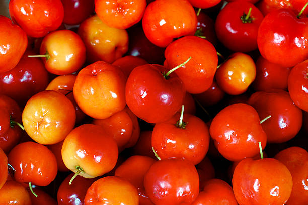 Fresh Red Acerola Berries stock photo