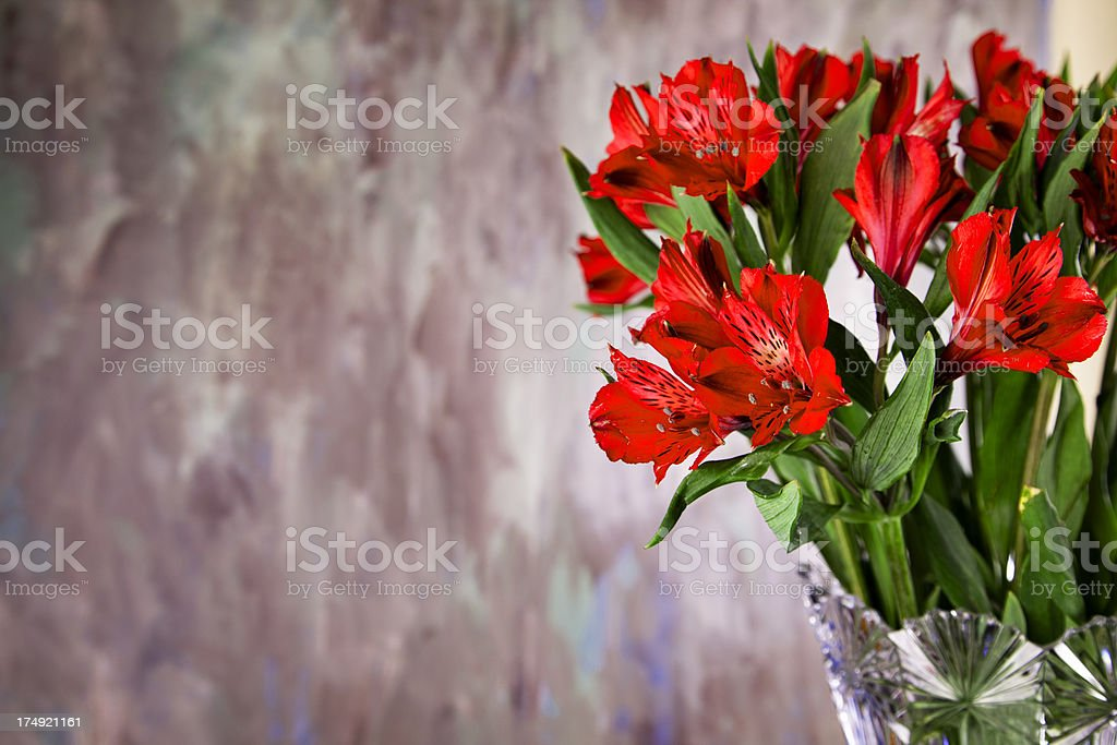 Fresh red alstroemeria in crystal vase copy space stock photo