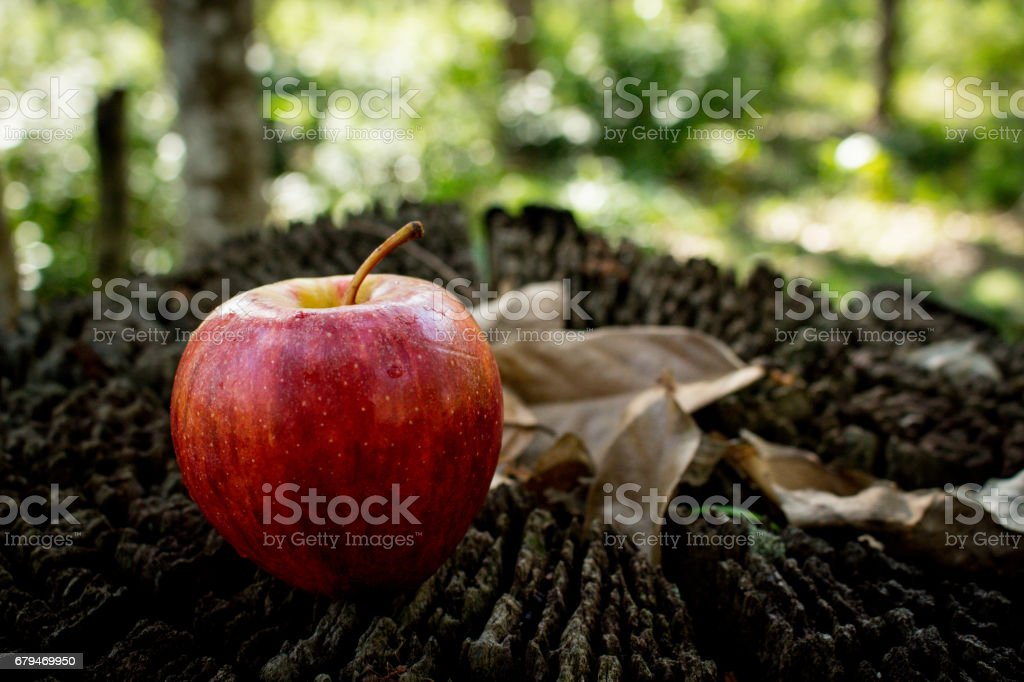 A Fresh Red Apple on Wooden Background 免版稅 stock photo