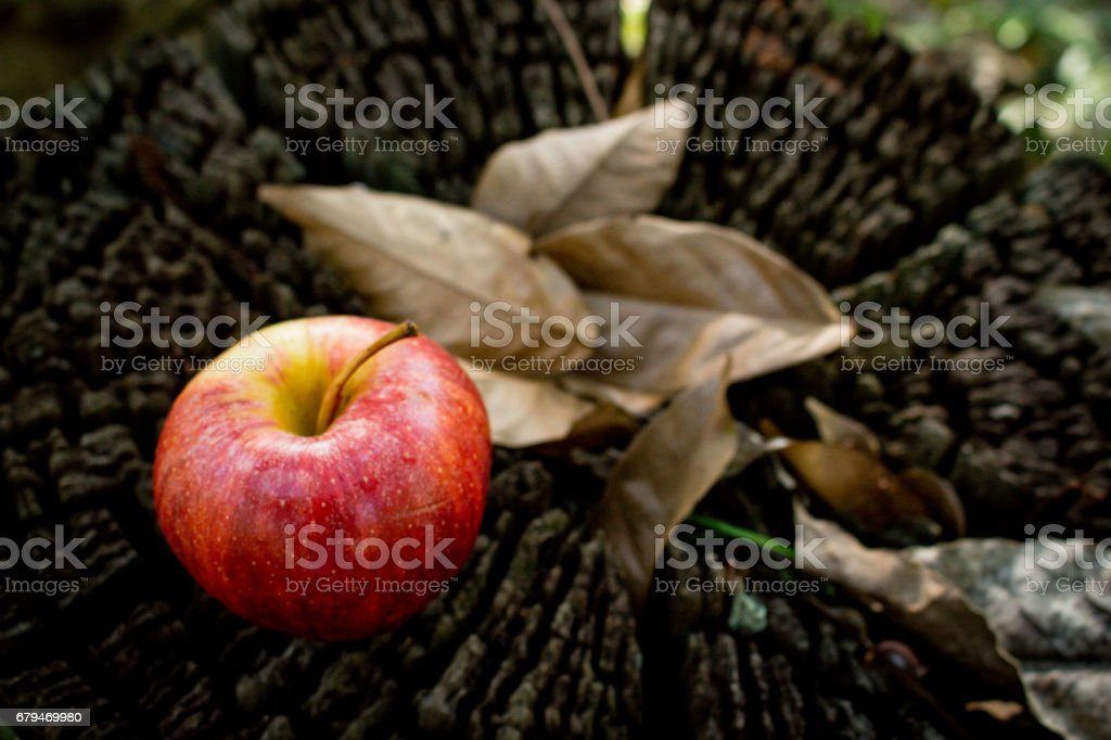 A Fresh Red Apple on Wooden Background royalty-free stock photo