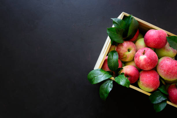 Fresh red apples in the wooden box on black background.  Top view. Copy space stock photo