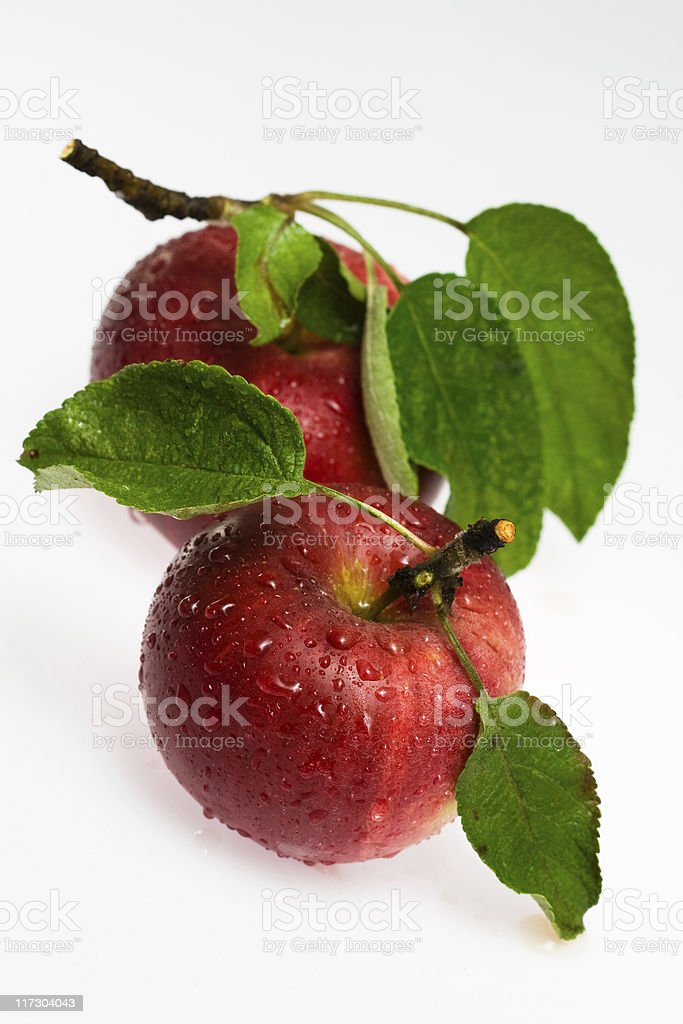 Fresh red apples stock photo