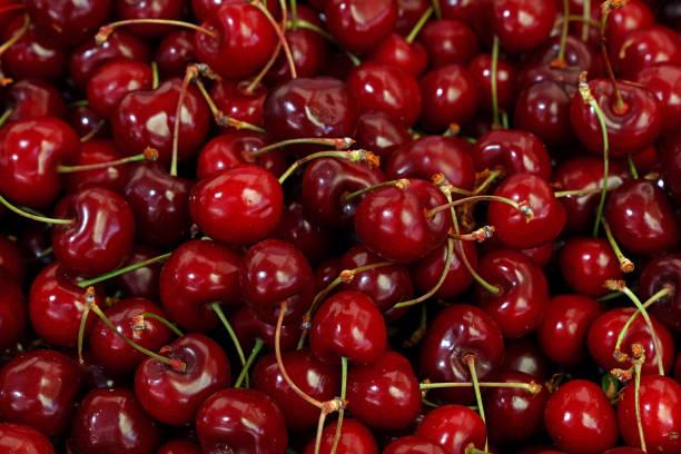 cerezas rojas frescas en el mercado minorista de cerca - cereza fotografías e imágenes de stock
