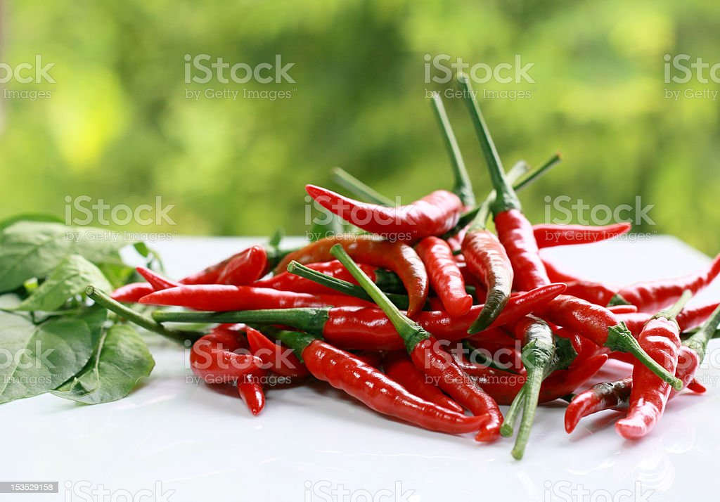 Fresh red chili. royalty-free stock photo