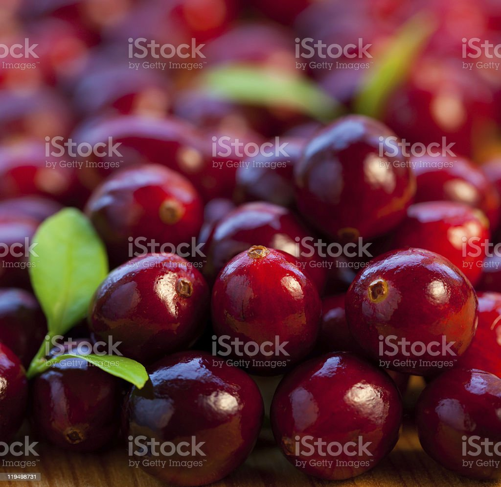 Fresh red cranberries stock photo