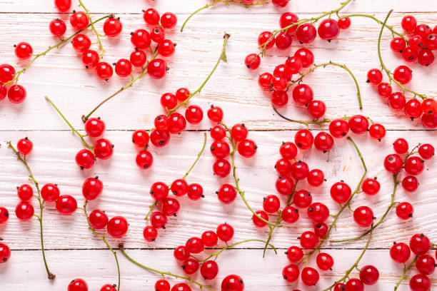 frische rote johannisbeere auf weißem holzhintergrund - ribiselmarmelade stock-fotos und bilder