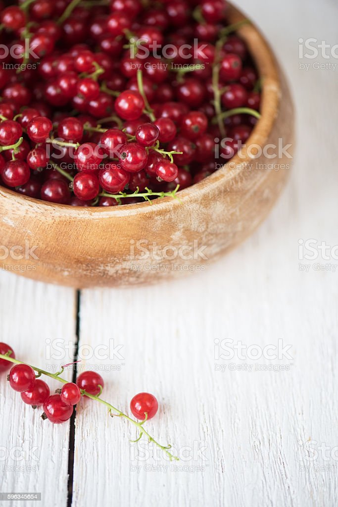 Fresh red currants royalty-free stock photo