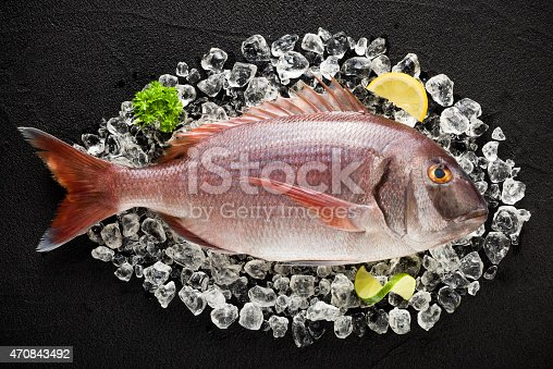 Fresh red porgy fish on ice on a black stone table top view