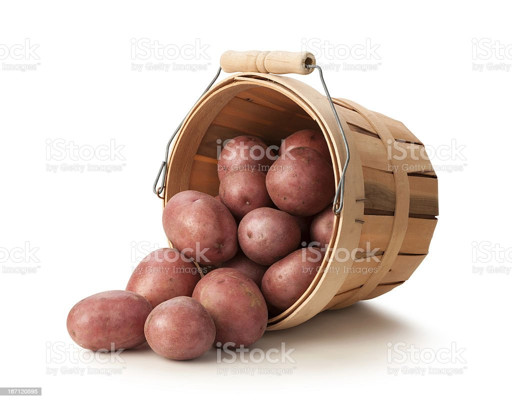 Fresh Red Potatoes in a Basket stock photo