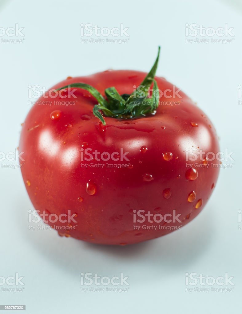 Fresh red tomato with drops of water on white background royalty-free stock photo