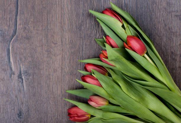 verse rode tulpenbloemen over houten achtergrond. - meerdere lagen effect stockfoto's en -beelden