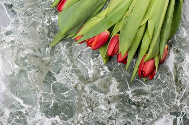 verse rode tulpenbloemen over marmeren achtergrond. - meerdere lagen effect stockfoto's en -beelden