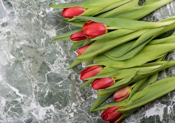 verse rode tulpenbloemen over steenachtergrond. - meerdere lagen effect stockfoto's en -beelden