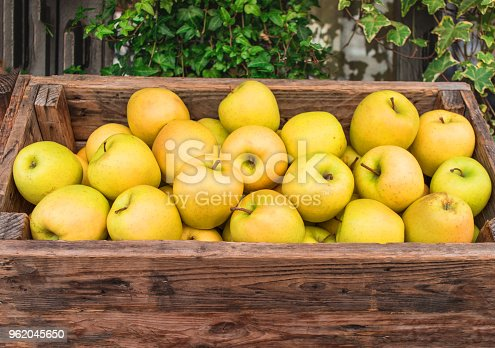 Fresh rganic Apples in a wooden box. Autumn harvest concept.  Top view