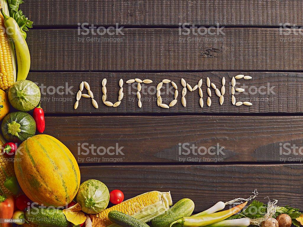 Fresh ripe autumn vegetables and herbs on garden table. stock photo