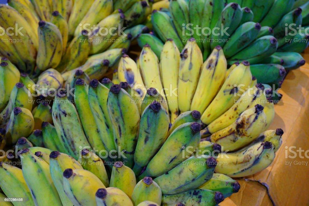 Fresh ripe bananas stock photo