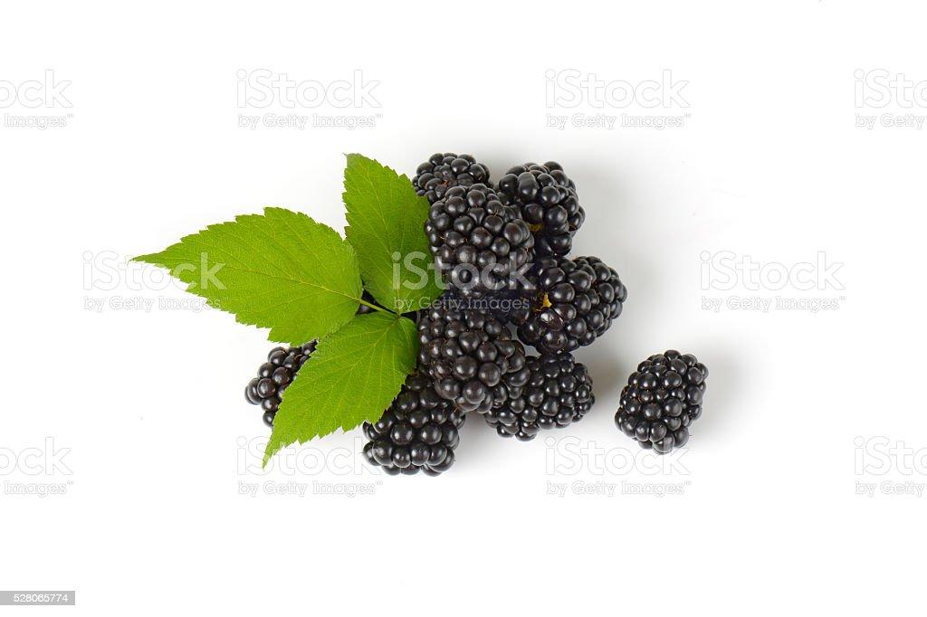 Fresh ripe blackberries stock photo