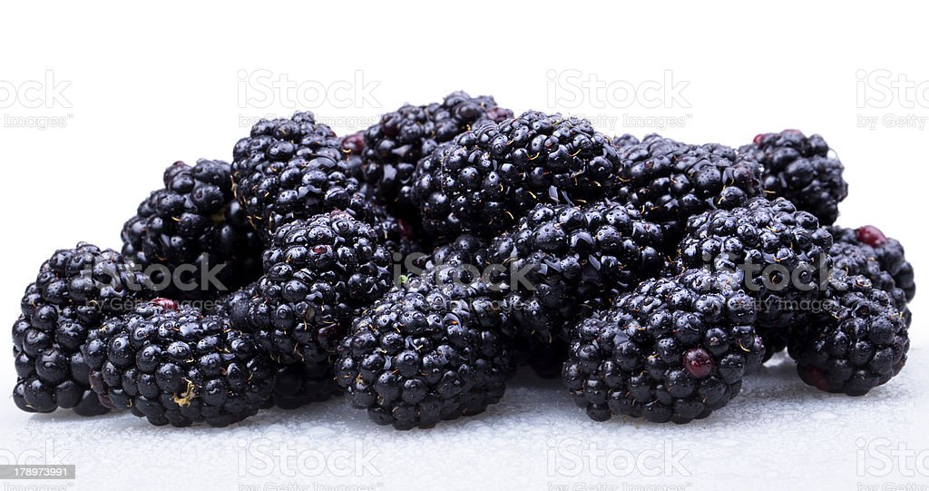 Fresh Ripe Blackberries with water drops royalty-free stock photo