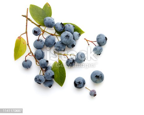 828761410 istock photo Fresh ripe blueberry berries and leaves isolated on white background. Top view. Flat lay. 1141170687