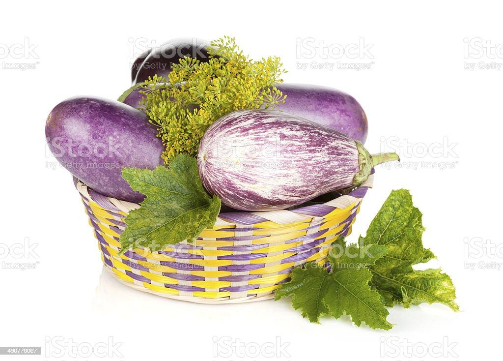 Fresh ripe eggplants in basket royalty-free stock photo
