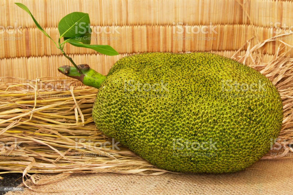 Fresh ripe jackfruit. Sweet jackfruit ready for eat. stock photo